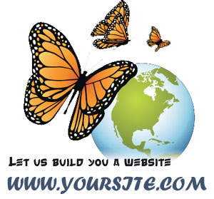 affordable web design south CAL